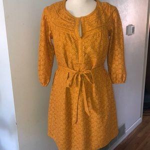 Daniel Rainn Mustard Embroidered Mini Dress S